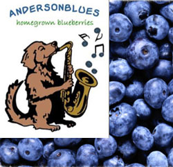 Anderson Blueberry Farm