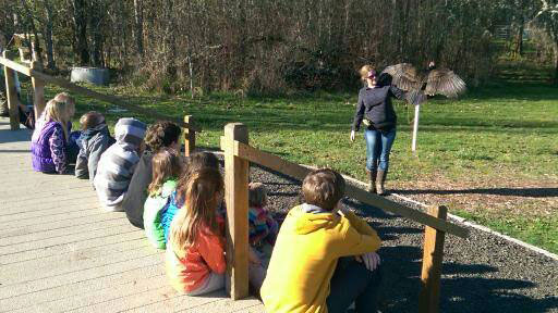 Kids getting up close and personal with a turkey vulture!