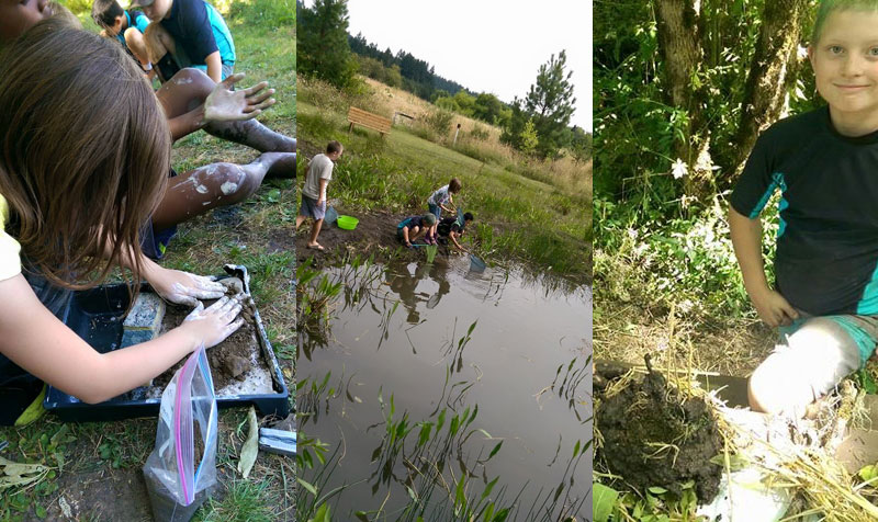 Fun activities for all! Making a wetland in a pan, exploring life in the pond, and nest building