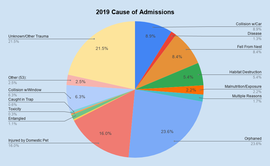 Animal Admission by Cause, 2016