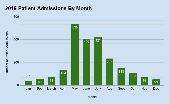 Patient Admissions by Month