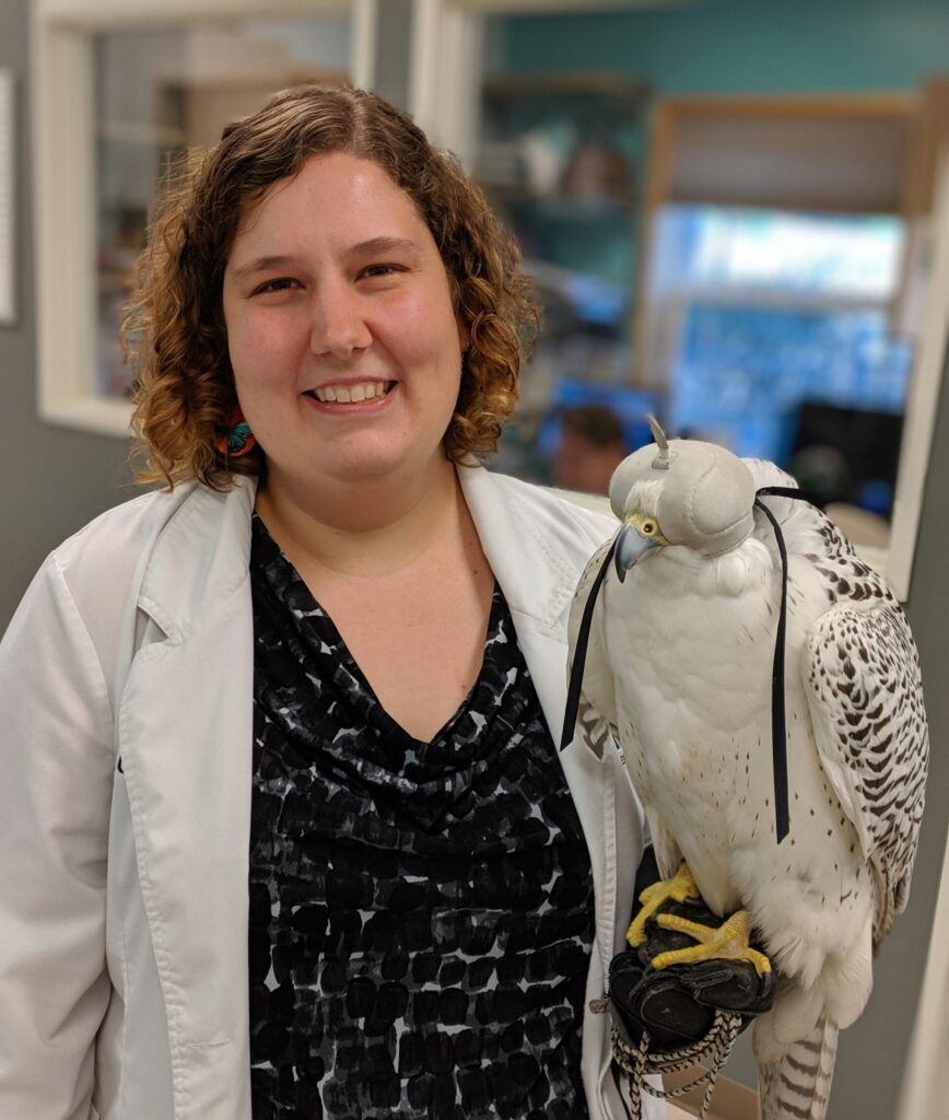 Dr. Claire Peterson